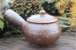 Preview: Teapot with Spout - right-hand model